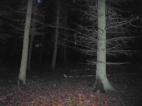 oscuridad-foscor2